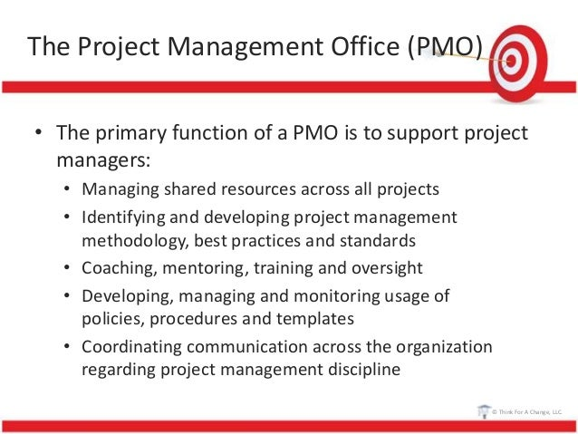 project manager vision statement example