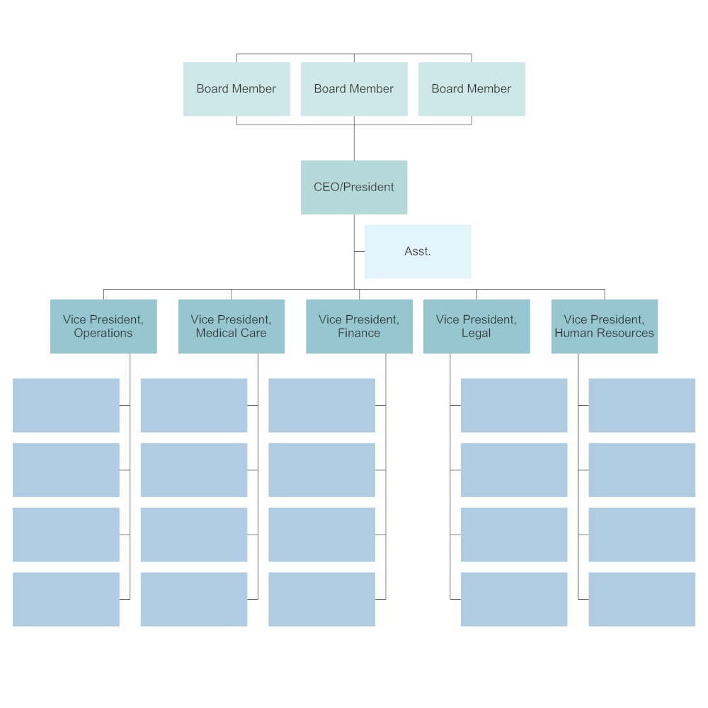 example organizational chart for public company