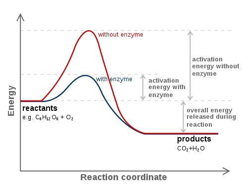 example of food using temperature to speed or slow reactions