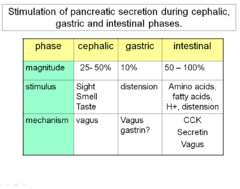 an example of a gastric secretion is quizlet